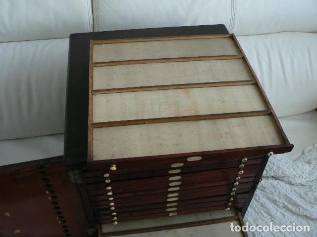 Antigüedades: MICROSCOPIO, CABINET PARA PREPARACIONES MICROSCÓPICAS c. 1880 - Foto 9 - 142601034