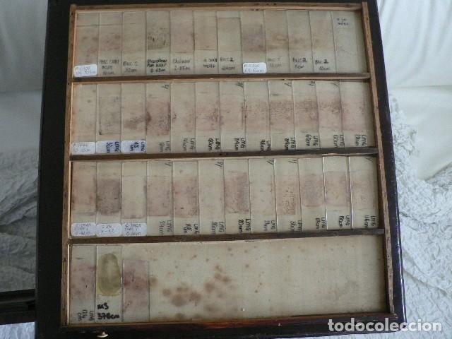 Antigüedades: MICROSCOPIO, CABINET PARA PREPARACIONES MICROSCÓPICAS c. 1880 - Foto 21 - 142601034
