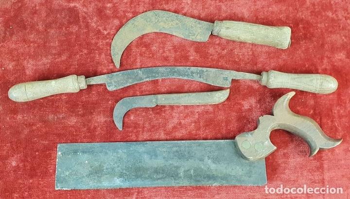 Antigüedades: CONJUNTO DE HERRAMIENTAS DE CARPINTERÍA Y EBANISTERÍA. SIGLO XIX-XX - Foto 7 - 148259278