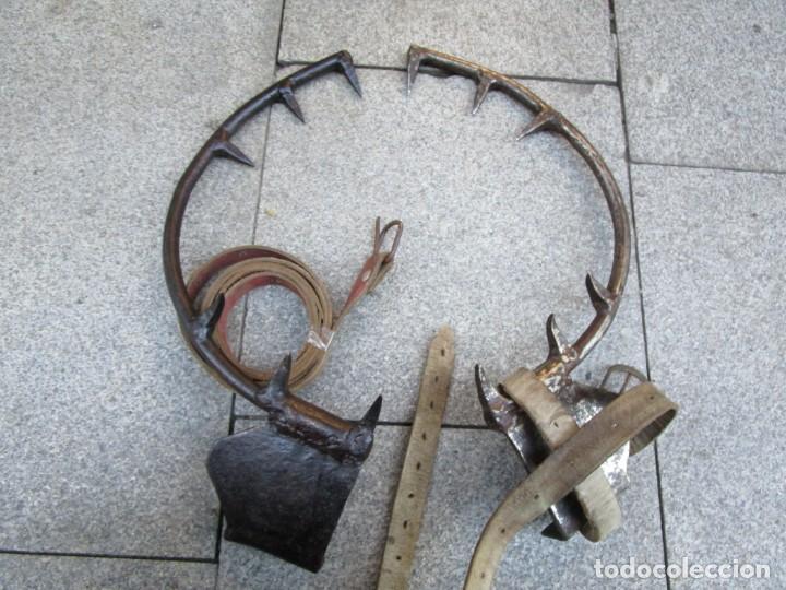 Antigüedades: PAREJA DE ANTIGUOS GRAMPONES, GANCHOS TREPAR ARBOLES POSTES ETC, EXCELENTE CONSERVACION + INFO FOTOS - Foto 2 - 150813822