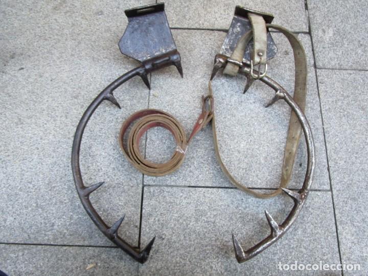 Antigüedades: PAREJA DE ANTIGUOS GRAMPONES, GANCHOS TREPAR ARBOLES POSTES ETC, EXCELENTE CONSERVACION + INFO FOTOS - Foto 3 - 150813822