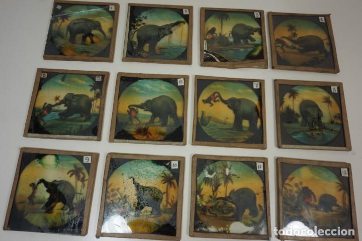 VARIADA COLECCIÓN DE 55 PLACAS PARA LINTERNA MÁGICA PINTADAS A MANO C.1890 (Antigüedades - Técnicas - Aparatos de Cine Antiguo - Linternas Mágicas Antiguas)