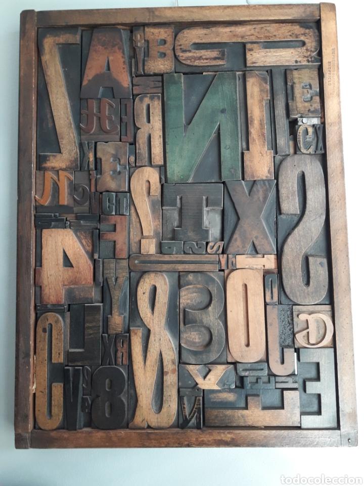 ANTIGUOS TIPOS DE IMPRENTA ENMARCADOS 49 X 37 CMS (Antigüedades - Técnicas - Herramientas Profesionales - Imprenta)