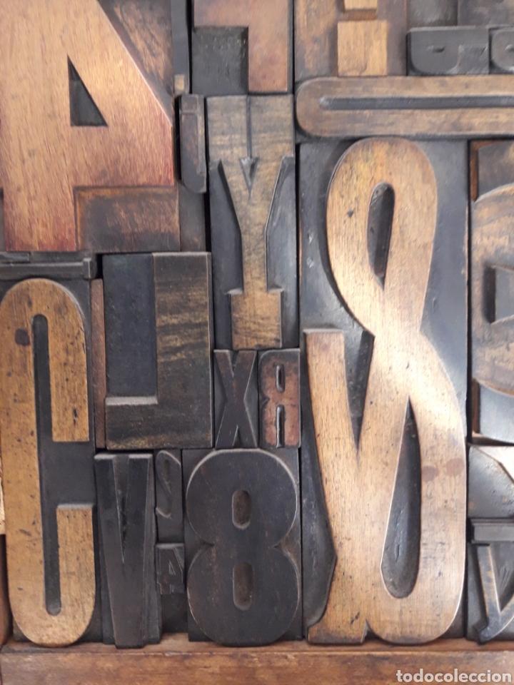 Antigüedades: Antiguos tipos de imprenta enmarcados 49 X 37 CMS - Foto 2 - 154890068
