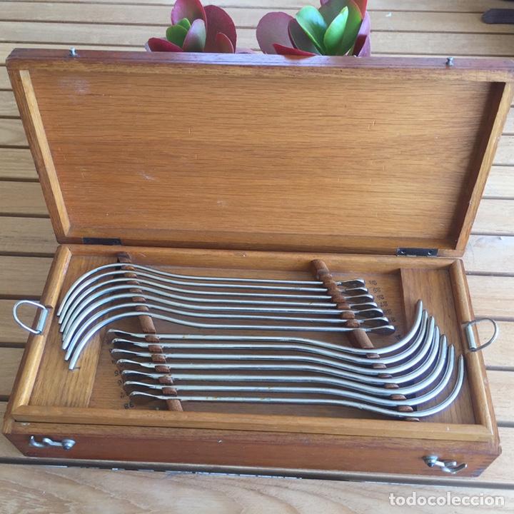 Antigüedades: Colección de instrumental médico en caja de madera. Principios s. XX - Foto 2 - 157810520