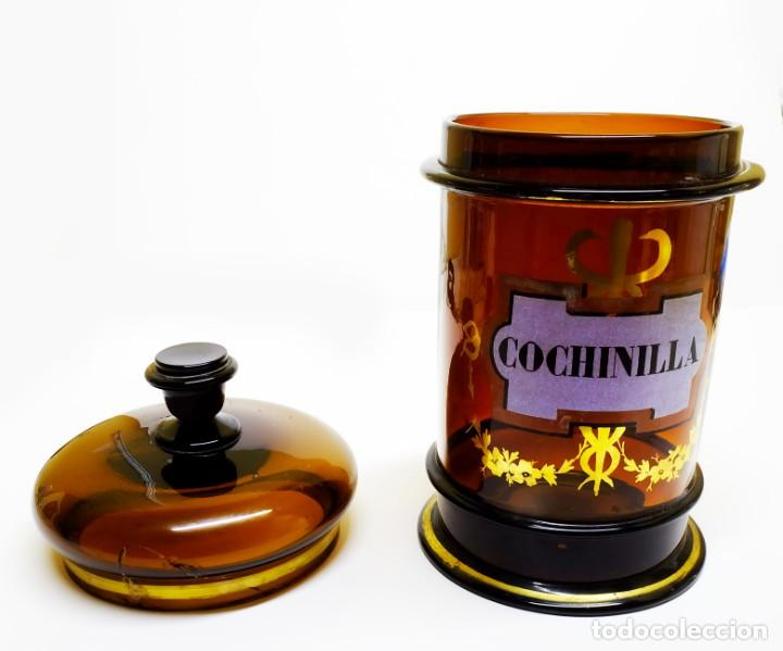 Antigüedades: 1877ca BOTÁMEN ALBARELO Giralt o Casademunt TARRO DE FARMACIA Cochinilla cristal topacio - Foto 2 - 158213606