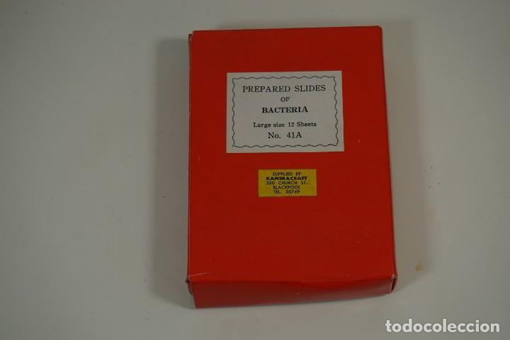 Antigüedades: MICROSCOPIO. COLECCIÓN DE PREPARACIONES MICROSCÓPICAS: BACTERIA - Foto 2 - 164730406