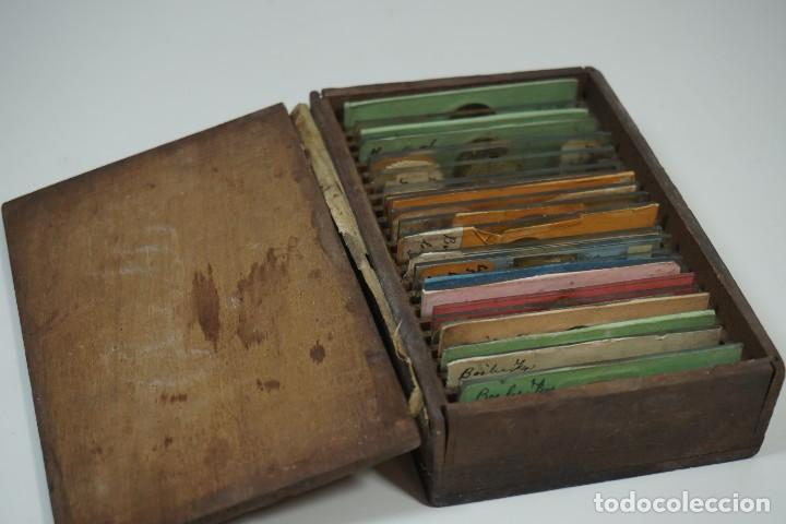 MICROSCOPIO. ANTIGUA COLECCIÓN DE 24 PREPARACIONES MICROSCÓPICAS C.1870 (Antigüedades - Técnicas - Instrumentos Ópticos - Microscopios Antiguos)