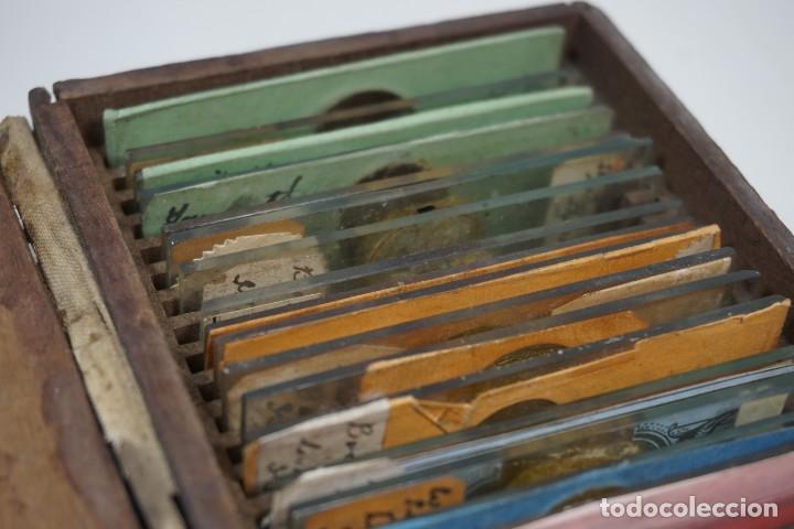 Antigüedades: MICROSCOPIO. ANTIGUA COLECCIÓN DE 24 PREPARACIONES MICROSCÓPICAS c.1870 - Foto 2 - 164730782