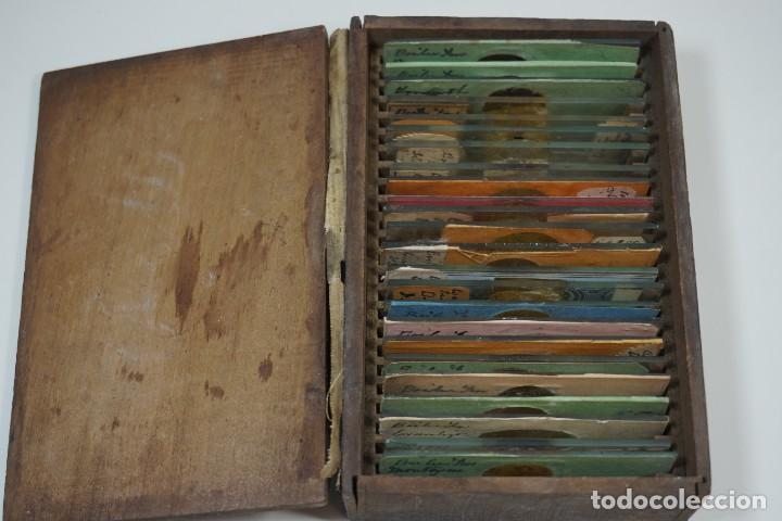 Antigüedades: MICROSCOPIO. ANTIGUA COLECCIÓN DE 24 PREPARACIONES MICROSCÓPICAS c.1870 - Foto 10 - 164730782