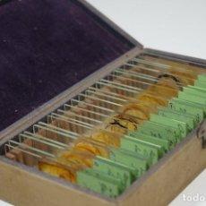 Antigüedades: MICROSCOPIO. ANTIGUA COLECCIÓN DE 24 PREPARACIONES MICROSCÓPICAS C.1880. Lote 164731854