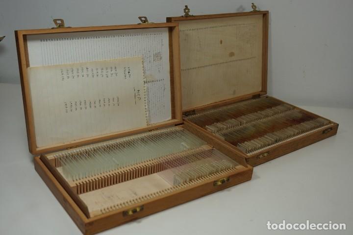 COLECCIÓN DE PREPARACIONES MICROSCÓPICAS (2 CAJAS) (Antigüedades - Técnicas - Instrumentos Ópticos - Microscopios Antiguos)