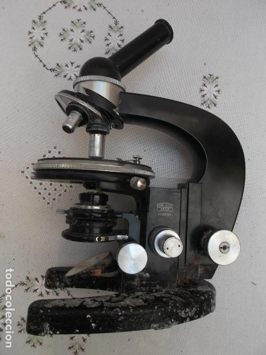 Antigüedades: microscopio,Stand Zeiss Jena LgO de principios de los años 40 microscopio aleman, decoracion, - Foto 2 - 165315410