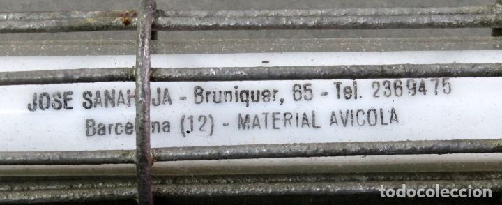 Antigüedades: Termómetro profesional de Material Avícola años 60 - Foto 4 - 167098496