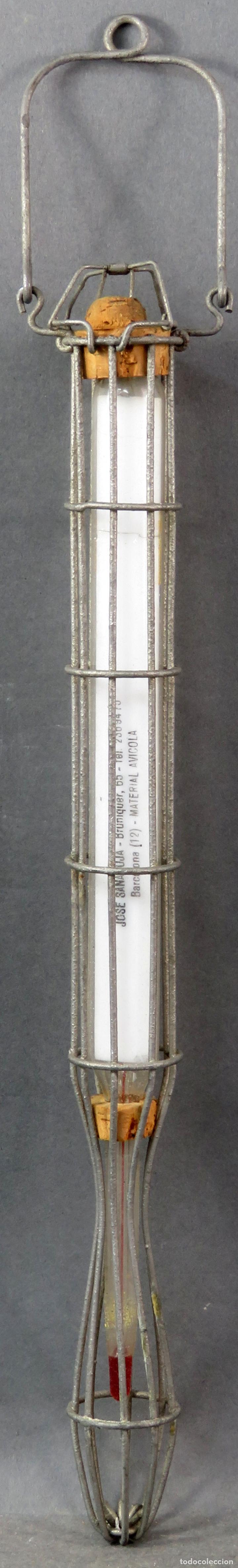 Antigüedades: Termómetro profesional de Material Avícola años 60 - Foto 5 - 167098496