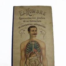Antigüedades: EL HOMBRE , REPRESENTACION GRAFICA DE SU ESTRUCTURA. DR.RAFAEL DEL VALLE Y ALDABALDE. S.XIX.. Lote 168748440