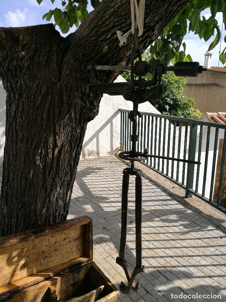 Antigüedades: BASCULA BALANZA ROMANA SIGLO XIX PARA PESAR TONELES-BARRICAS-BOTAS DE VINO VITICULTURA--REF-DC - Foto 9 - 172783698