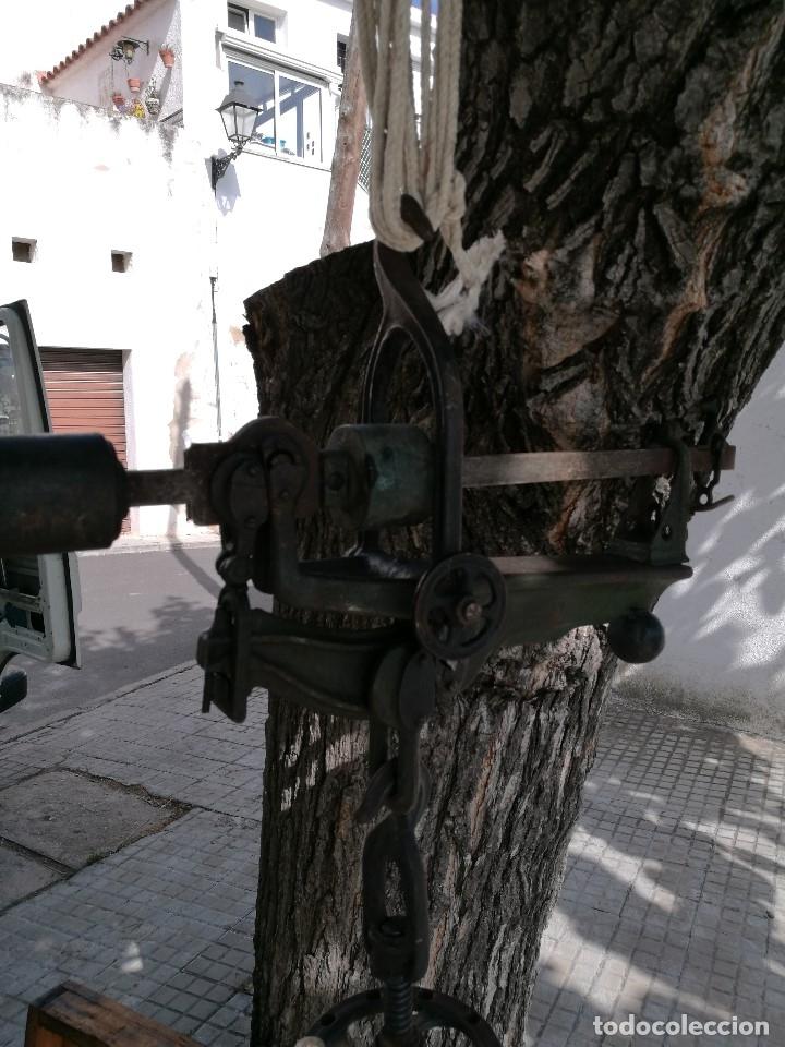Antigüedades: BASCULA BALANZA ROMANA SIGLO XIX PARA PESAR TONELES-BARRICAS-BOTAS DE VINO VITICULTURA--REF-DC - Foto 11 - 172783698