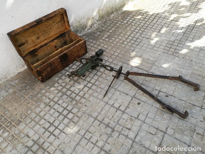 Antigüedades: BASCULA BALANZA ROMANA SIGLO XIX PARA PESAR TONELES-BARRICAS-BOTAS DE VINO VITICULTURA--REF-DC - Foto 26 - 172783698