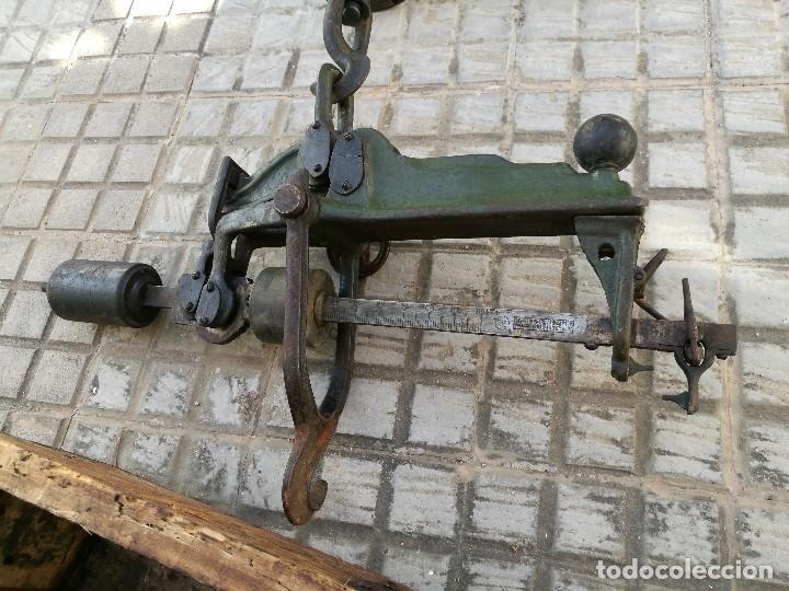 Antigüedades: BASCULA BALANZA ROMANA SIGLO XIX PARA PESAR TONELES-BARRICAS-BOTAS DE VINO VITICULTURA--REF-DC - Foto 27 - 172783698