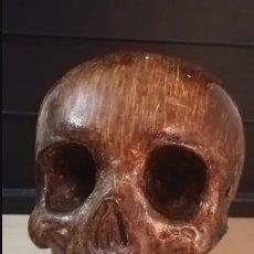 Antigüedades: CRANEO HUMANO MEDICINA. Lote 174444225