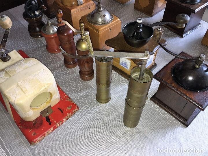 Antigüedades: 17 Molino Molinillo de cafe, pimienta y salero, firmas Leinbrocks Jdeal, Zassenhaus, Peter Dienes... - Foto 20 - 174505680