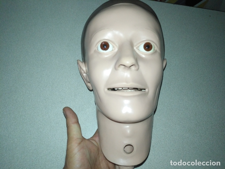 Antigüedades: acepto ofertas - cuerpo anatomia humano cabeza practicas medicina tamaño natual ojos de cristal - Foto 10 - 176369795