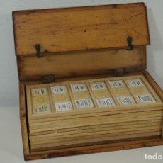 Antigüedades: MICROSCOPIO. COLECCIÓN DE 66 PREPARACIONES MICROSCÓPICAS PROFESIONALES BRITÁNICAS C.1950. Lote 176826473