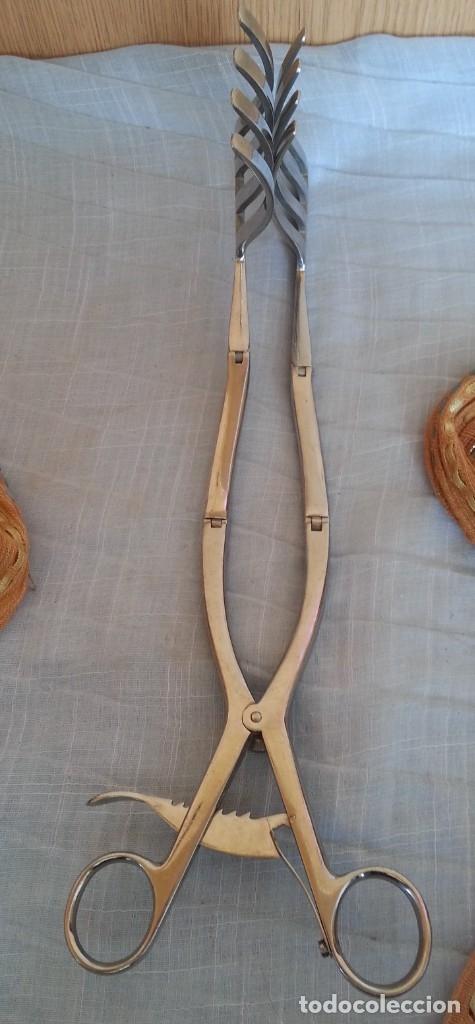 Antigüedades: Pinzas, fórceps. Instrumental quirúrgico. - Foto 2 - 180114451