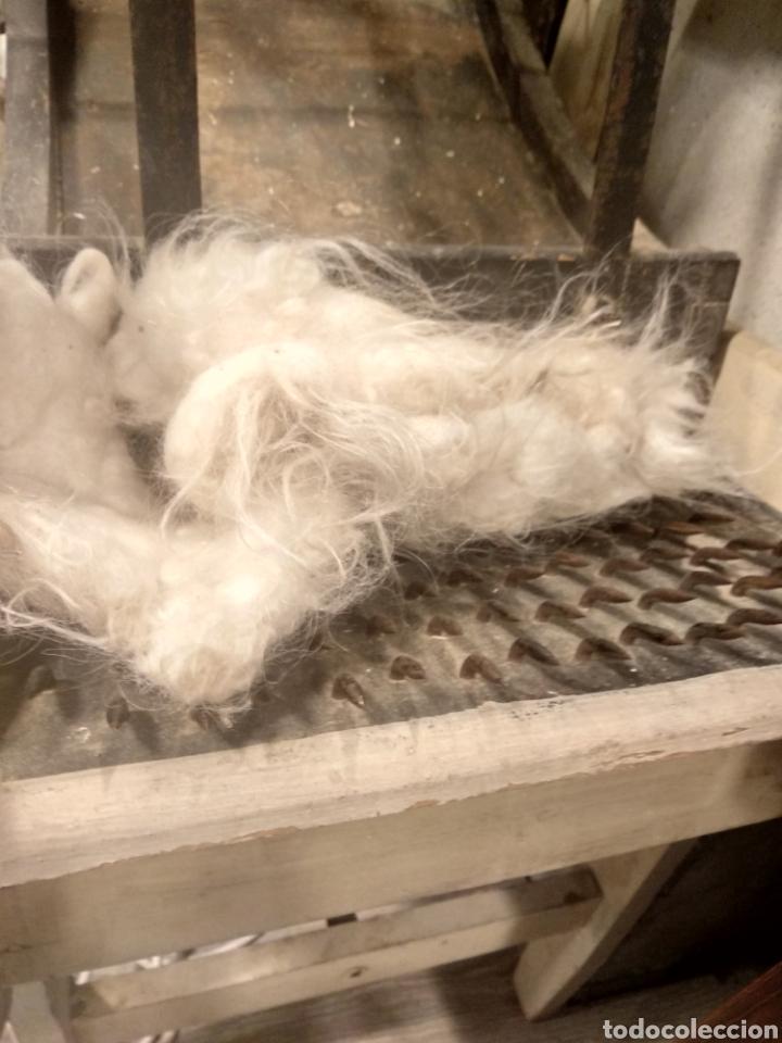 Antigüedades: Aparato, antigua máquina cardar lana - Foto 4 - 181424857