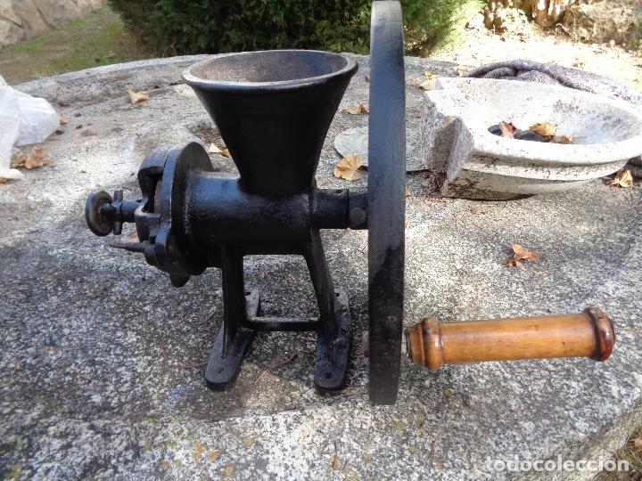 Antigüedades: Gran molino de café a rueda - Foto 2 - 181947118