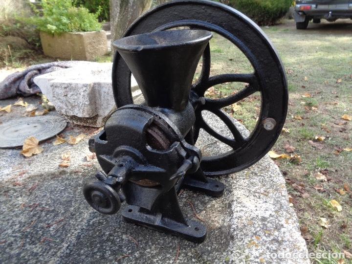 Antigüedades: Gran molino de café a rueda - Foto 3 - 181947118