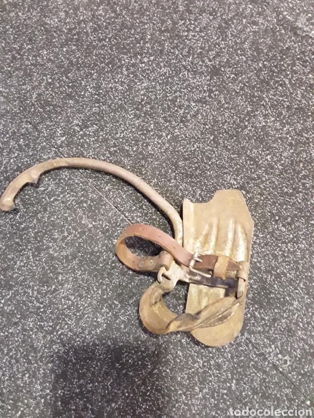 Antigüedades: Trepadores o grampones Zapato con pinchos para subir postes - Foto 2 - 184556312