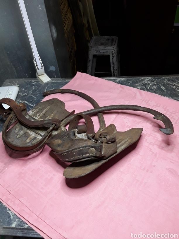 Antigüedades: Trepadores o grampones Zapato con pinchos para subir postes - Foto 8 - 184556312
