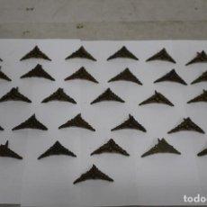 Antigüedades: 30 CLAVOS/TACHUELA ORNAMENTAL DE BRONCE DE FINALES XIX. 3.5 X 3.5 CM. COMO NUEVAS, NUNCA USADAS. Lote 188549451