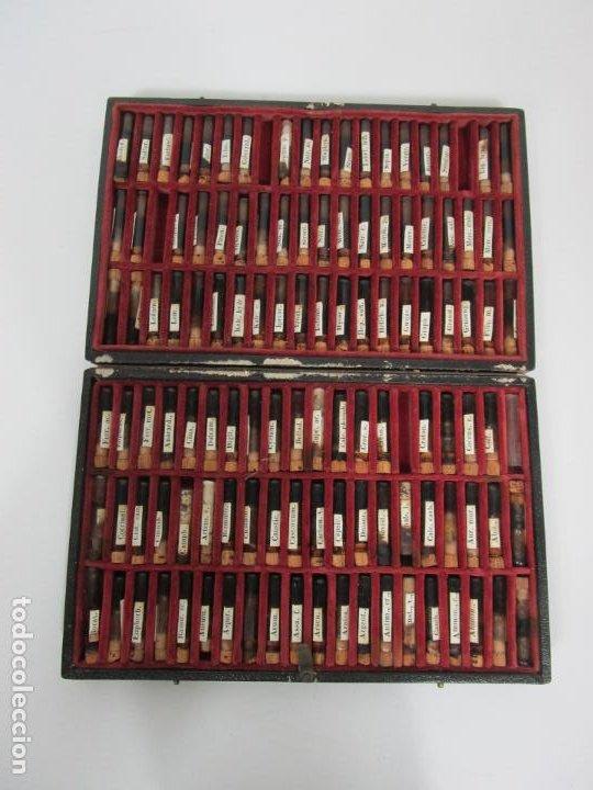ANTIGUO ESTUCHE DE MEDICINA, HOMEOPATÍA, FARMACIA - 120 TUBOS DE CRISTAL - FINALES S. XIX (Antigüedades - Técnicas - Herramientas Profesionales - Medicina)