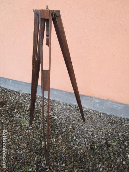 Antigüedades: Antiguo Trípode Militar Extensible, Madera de Roble - Aparatos Ópticos, Cámara Fotográfica -Original - Foto 11 - 198206511