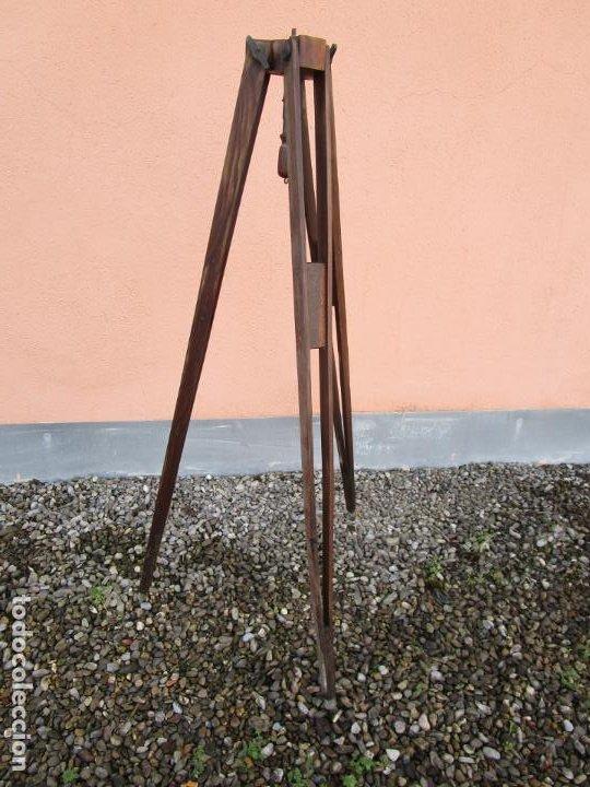 Antigüedades: Antiguo Trípode Militar Extensible, Madera de Roble - Aparatos Ópticos, Cámara Fotográfica -Original - Foto 17 - 198206511