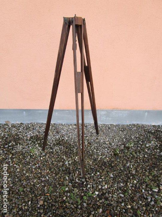 Antigüedades: Antiguo Trípode Militar Extensible, Madera de Roble - Aparatos Ópticos, Cámara Fotográfica -Original - Foto 18 - 198206511