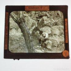 Antigüedades: ANTIGUO CRISTAL LINTERNA MAGICA - EL NOI DOLENT - JOSEP Mª FOLCH TORRES - PRECINEMA - 10X8,5 CM. Lote 198618857
