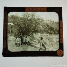 Antigüedades: ANTIGUO CRISTAL LINTERNA MAGICA - EL NOI DOLENT - JOSEP Mª FOLCH TORRES - PRECINEMA - 10X8,5 CM. Lote 198618992