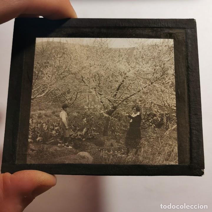 Antigüedades: ANTIGUO CRISTAL LINTERNA MAGICA - EL NOI DOLENT - JOSEP Mª FOLCH TORRES - PRECINEMA - 10X8,5 CM - Foto 3 - 198619042