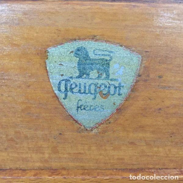 Antigüedades: Antiguo molinillo de café Peugeot Frerés Francia 1940`s - Foto 5 - 198945681