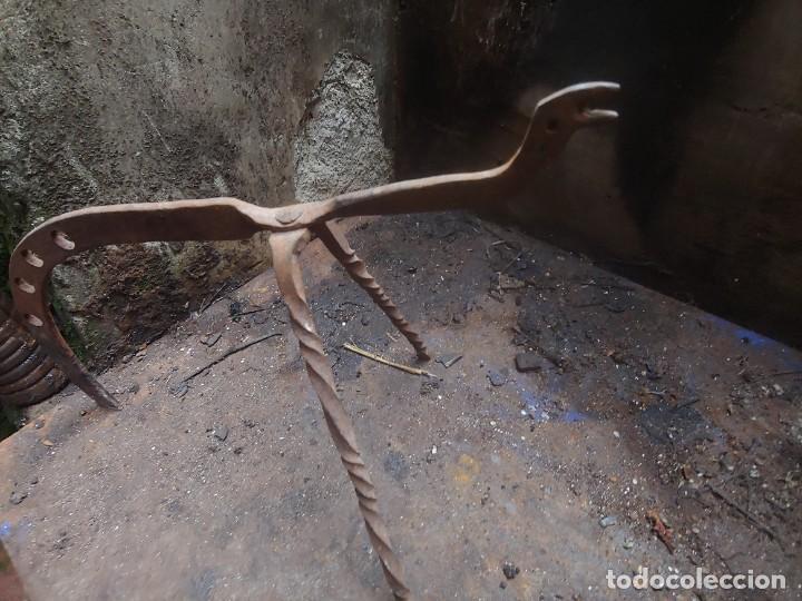 Antigüedades: Gallo o mula de fuego s.xvii - Foto 2 - 199349080