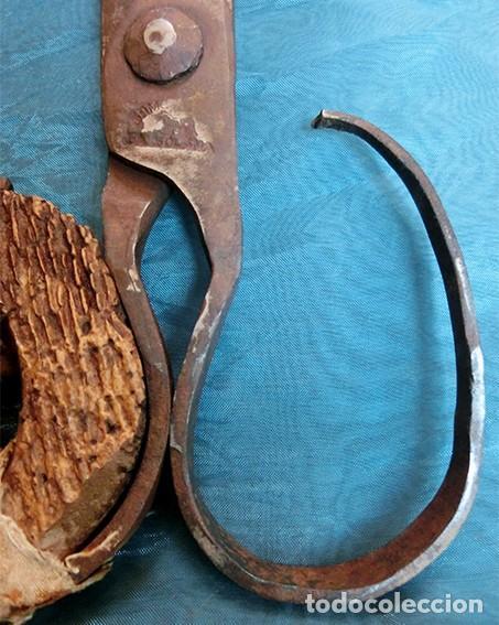 Antigüedades: ANTIGUAS TIJERAS DE ESQUILAR - HIERRO FORJADO - ARTESANALES - SELLO DEL HERRERO - DECORACIÓN RÚSTICA - Foto 8 - 205827093