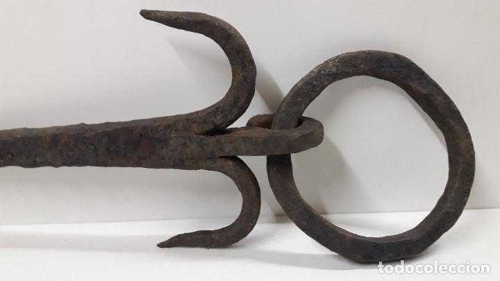 Antigüedades: MUY ANTIGUO CLAVO CON ARO . REALIZADO EN FORJA . MEDIDA DE LARGO SEGUN FOTO 40 CM - Foto 7 - 211718136