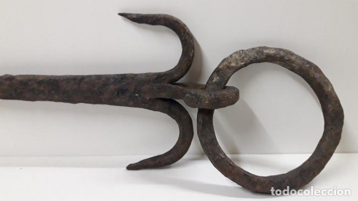 Antigüedades: MUY ANTIGUO CLAVO CON ARO . REALIZADO EN FORJA . MEDIDA DE LARGO SEGUN FOTO 40 CM - Foto 10 - 211718136