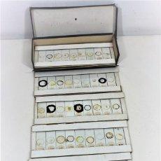 Antigüedades: MICROSCOPIO. COLECCIÓN DE 49 PREPARACIONES MICROSCÓPICAS C. 1900. Lote 221938746