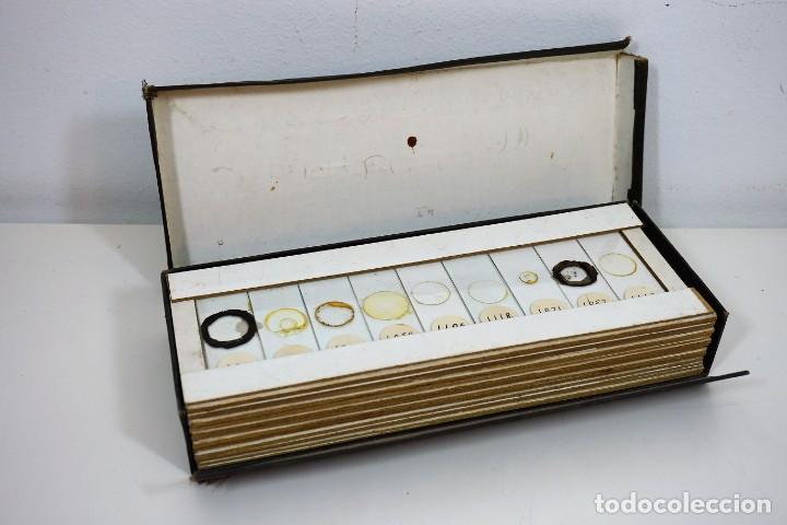 Antigüedades: MICROSCOPIO. COLECCIÓN DE 49 PREPARACIONES MICROSCÓPICAS c. 1900 - Foto 8 - 221938746
