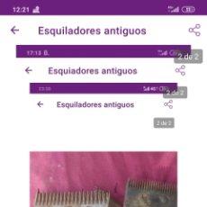 Antigüedades: ESQUILADORES ANTIGUOS. Lote 222221135
